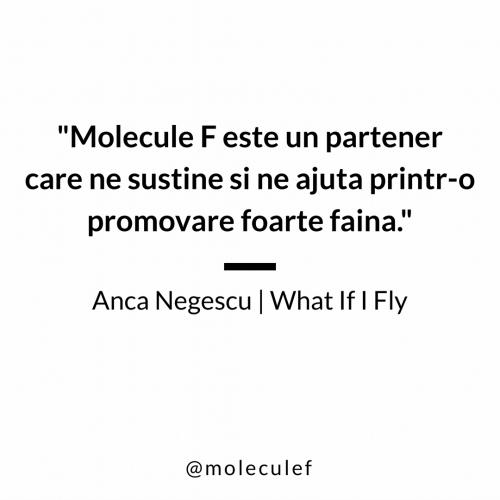 Anca Negescu quote