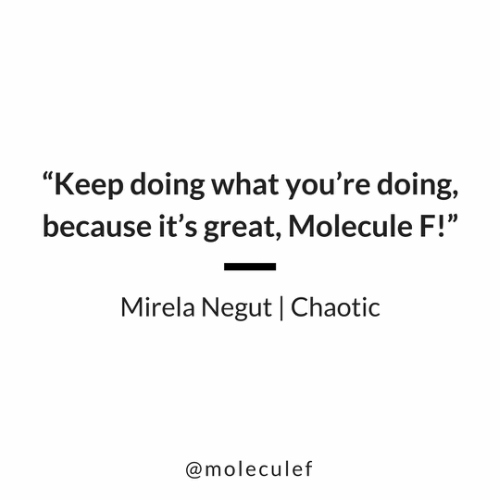 Quote Mirela Negut