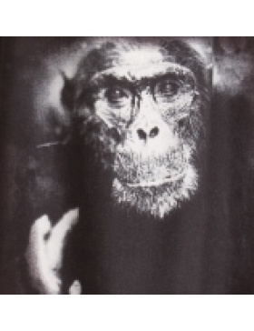 Monkey print dress
