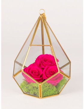 Preserved roses in diamond sahped terrarium