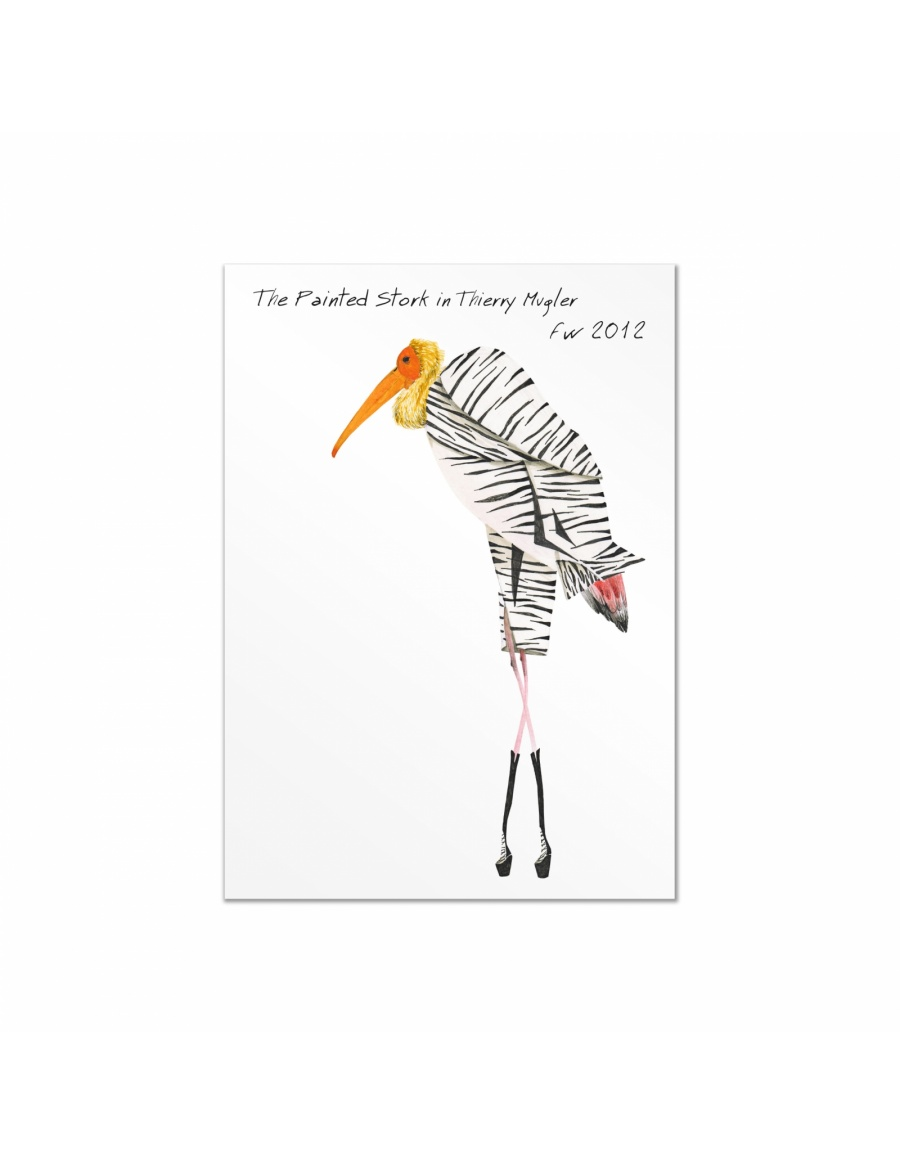 Fashion Birds postcards set #8