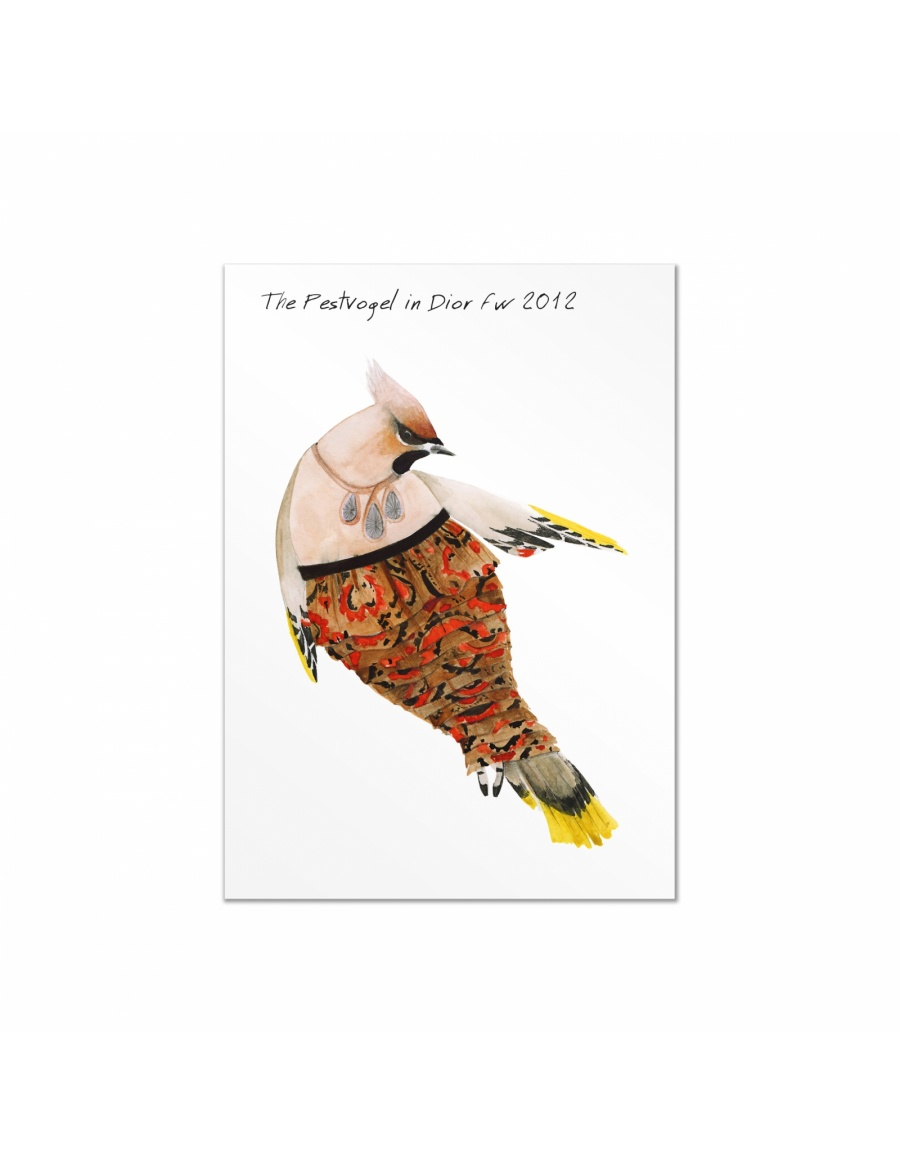 Fashion Birds postcards set #9