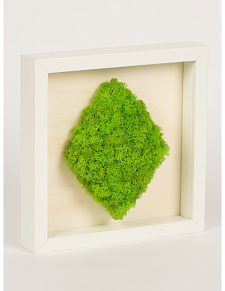Frame with diamond shaped preserved moss