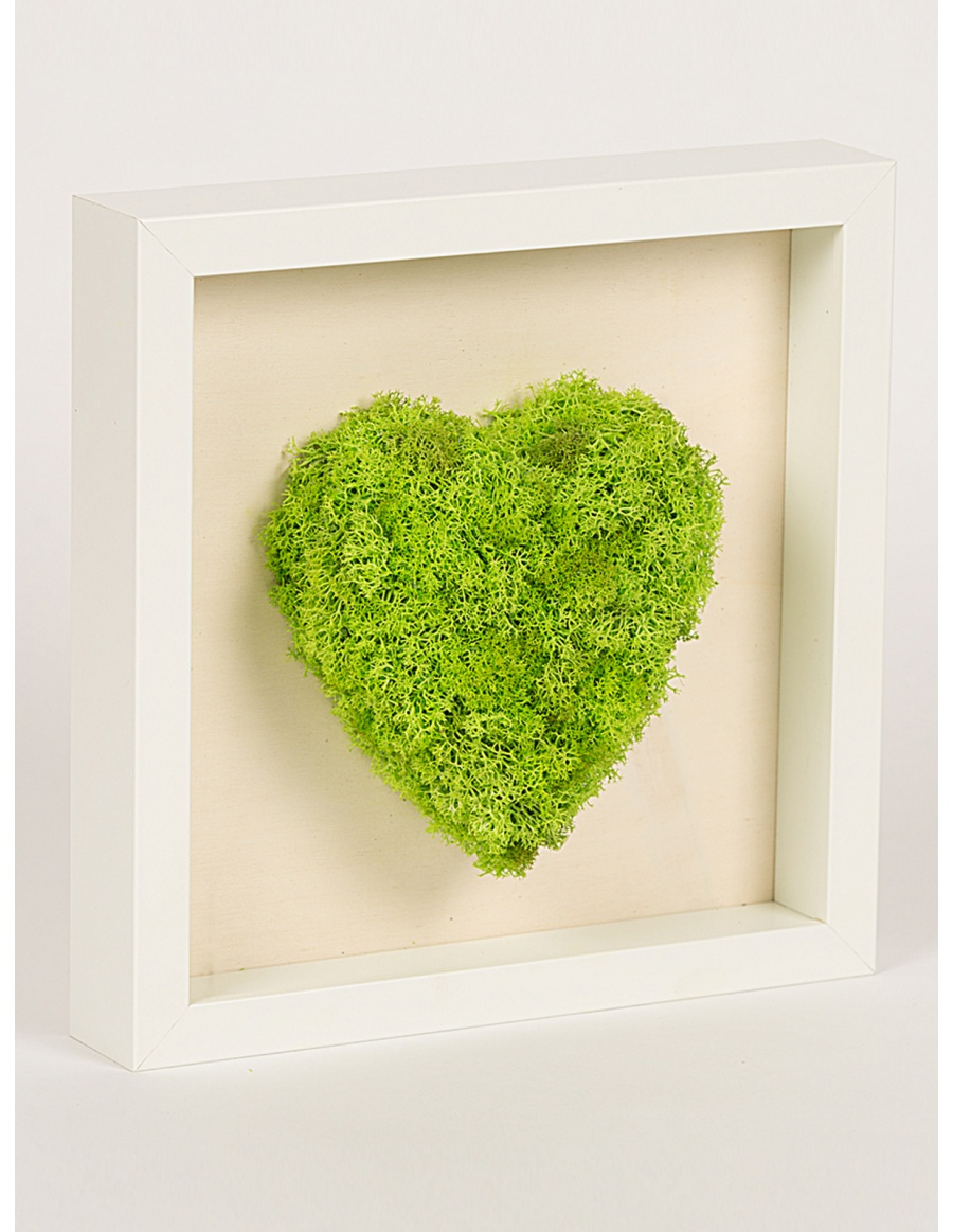 Frame with heart shaped green moss