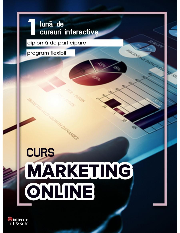 Curs de Online Marketing