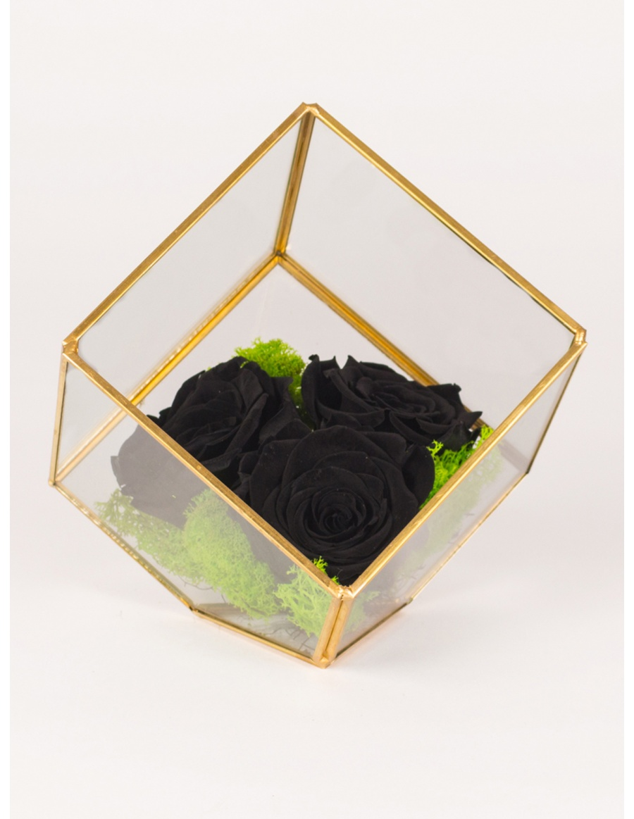Preserved roses arrangement in cube shape terrarium
