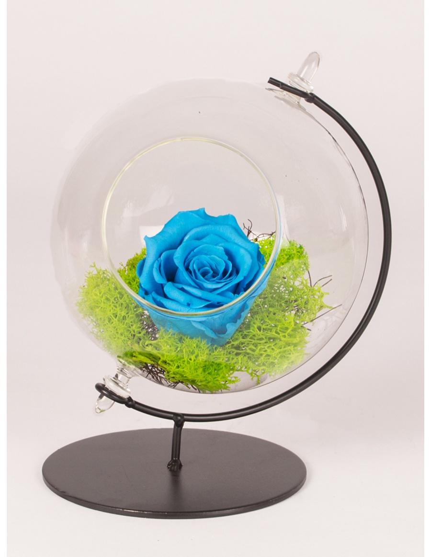 Preserved red rose in glass globe