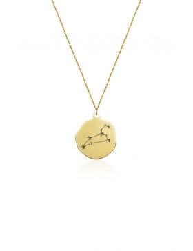 Leo Constellation Necklage