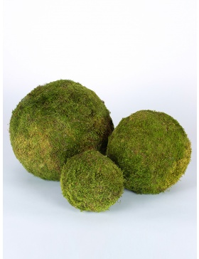 Moss Ball 20
