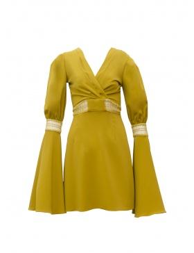 Posh Dress