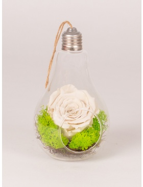 Light bulb with preserved rose