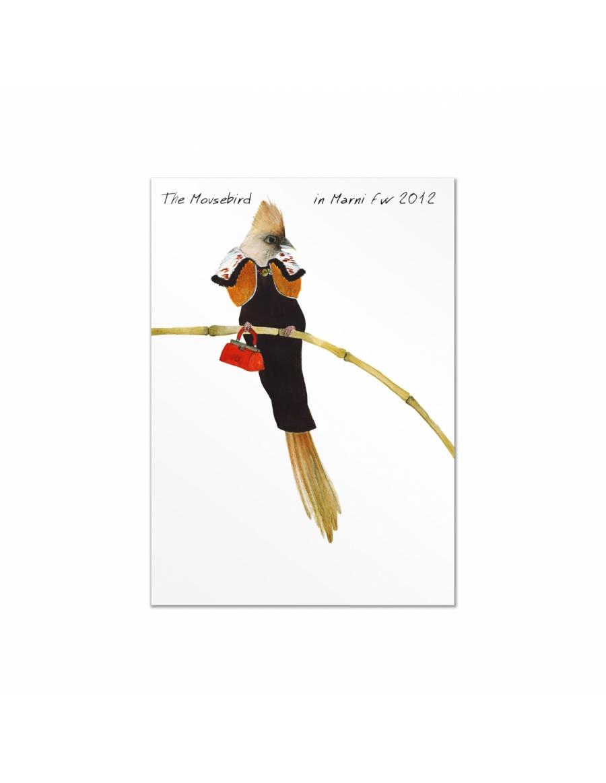 Set carti postale Fashion Birds  #7